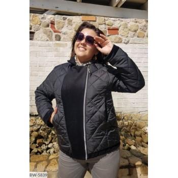 Куртка BW-5839