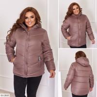 Куртка EG-2843