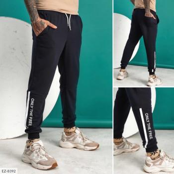 Мужские брюки EZ-8392